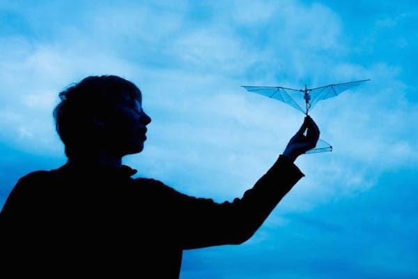 morphing-wings-bot-bird-lentink-lab-stanford-university