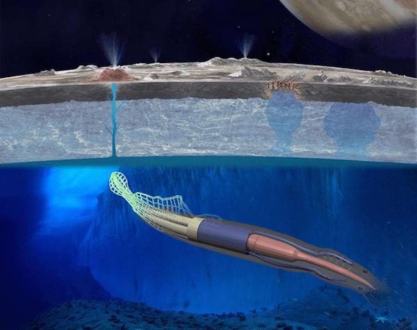 NASA-Robotic-Eel-Space