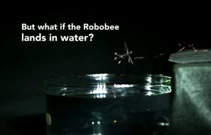 RoboBee-Flying-Submarine