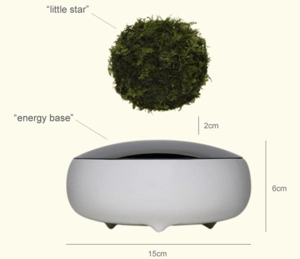 Air_bonsai