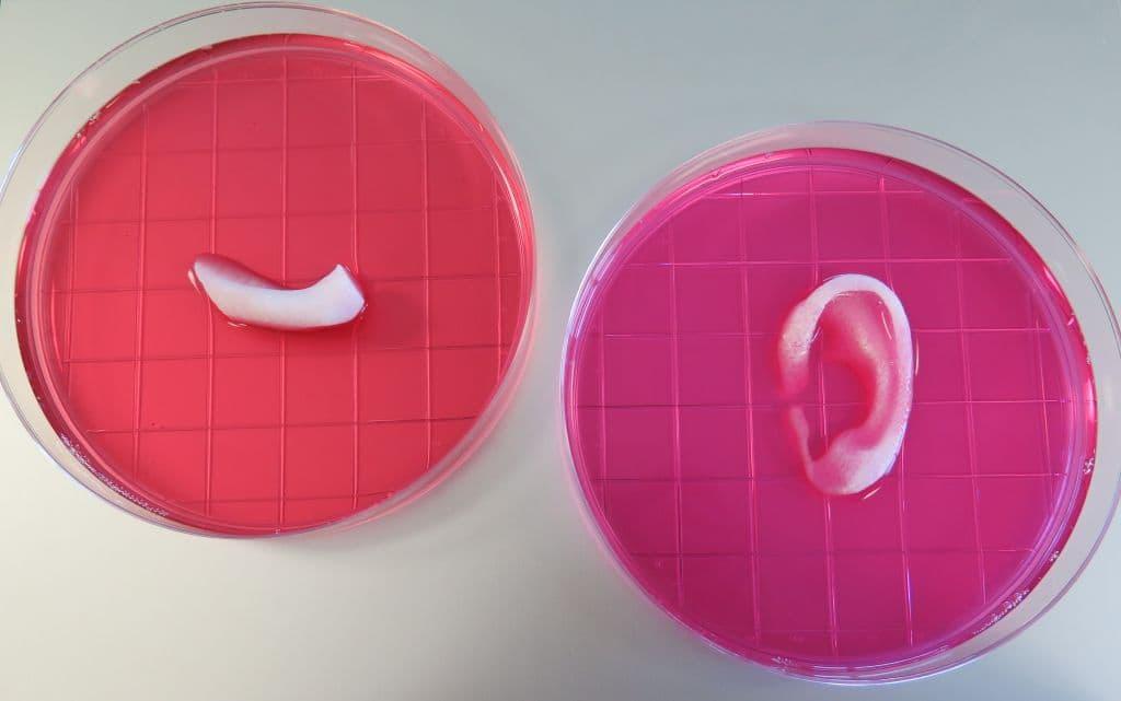3D-printing-living-tissue