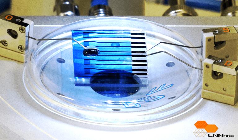 biosensor-to-detect-degenerative-diseases
