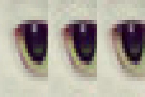 Google_encoded_image