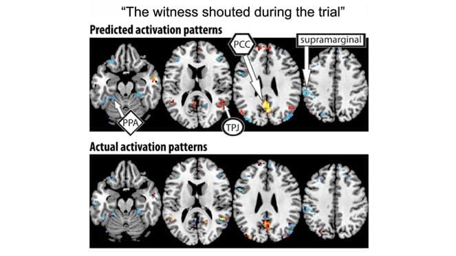 activation-patterns-CMU-brainscans
