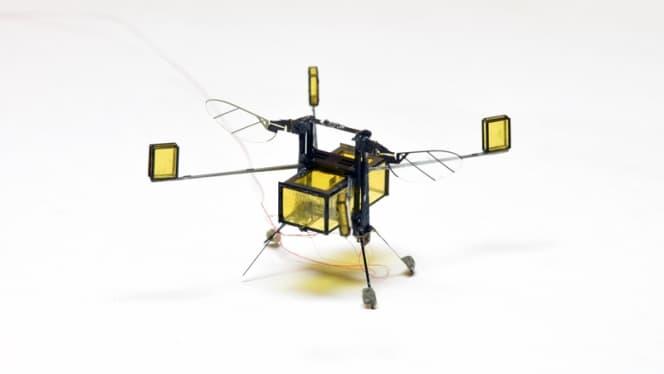microbot-robobee-harvard