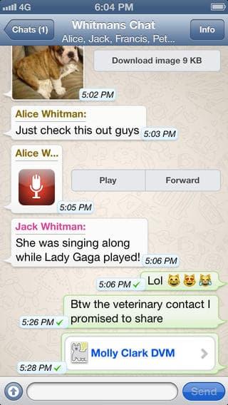 whatsapp-for-iphone-4