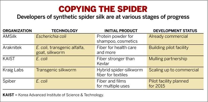 spider_silk_1